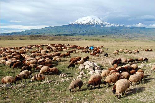 Mount Ararat in Eastern Turkey. Photo by Ferrell Jenkins