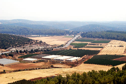 The Valley of Elah from Azekah. Photo by Ferrell Jenkins.