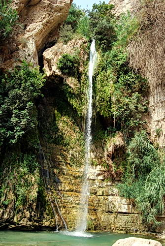 David's Waterfall at En Gedi. Photo by Ferrell Jenkins.