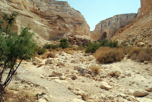 Wadi Zin. Photo by Ferrell Jenkins.