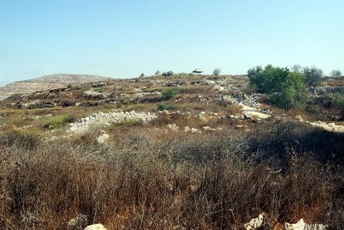 Tel Shilo. Photo by Ferrell Jenkins.