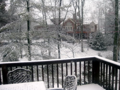 Snow in Louisville. Photo by Ferrell Jenkins.