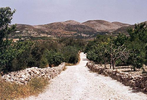 samaria_path_mountains_1981-t