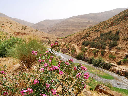 The Jabbok (Zerqa) River near the Jordan Valley. Photo by Ferrell Jenkins.