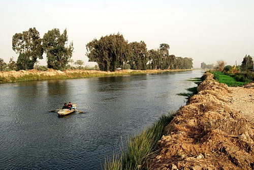 A canal where the Pelusiac branch of the Nile once flowed. Photo by F. Jenkins.