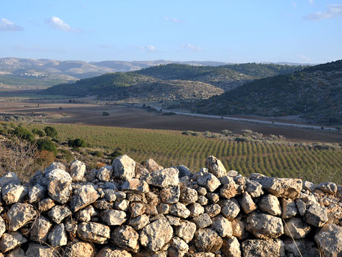 A view from Khirbet Qeifaya across the Valley of Elah to Socoh. Photo by Ferrell Jenkins.
