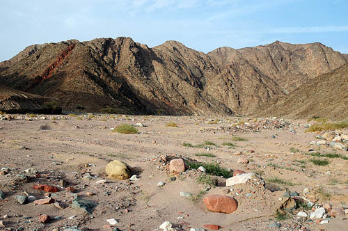 Wadi el Tor in the Sinai Peninsula after a flash flood. Photo by Ferrell Jenkins.