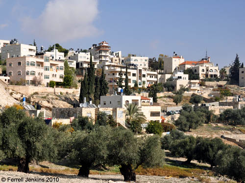 Eastern slope of Mount of Olives near Bethany. Photo by Ferrell Jenkins.