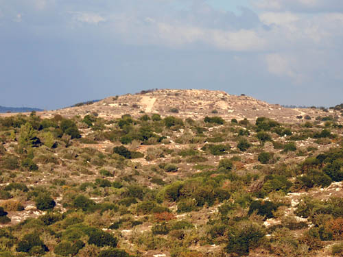 Jarmuth from Khirbet Qeiyafa. Photo by Ferrell Jenkins.
