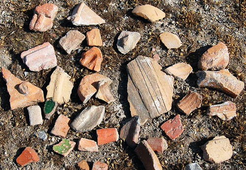 Collected potsherds on the surface of Derbe. Photo by Ferrell Jenkins.