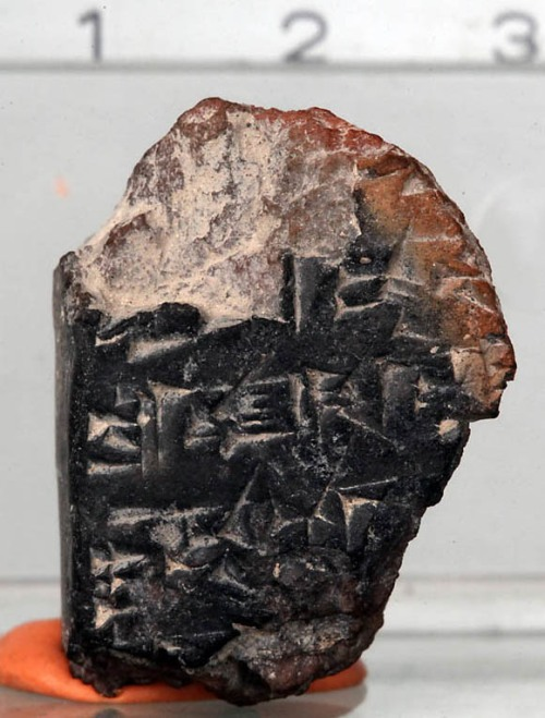 """Jerusalem 1"" - the Cuneiform Fragment from the Ophel Excavation."