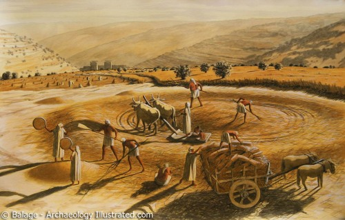 Araunah's Threshing Floor. Art by Balage, Archaeology Illustrated.
