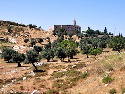 Scattered olive grove on a hill below Mar Elias Monastery. Photo by Ferrell Jenkins.