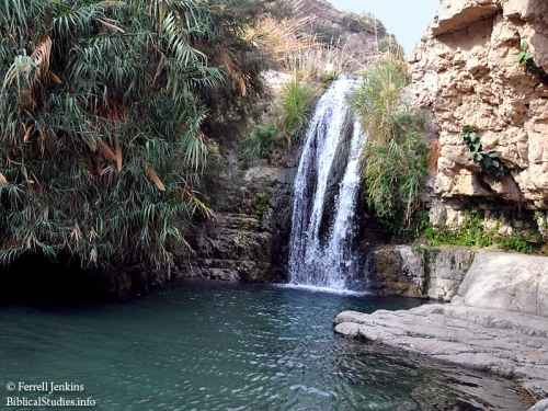 Waterfall at En Gedi. Photo by Ferrell Jenkins.