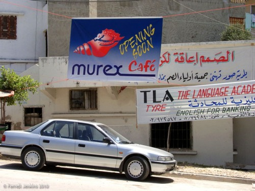 Murex Cafe at Tyre, Lebanon. Photo by Ferrell Jenkins.