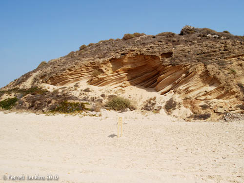 Erosion visible in Tel Ashkelon. Photo by Ferrell Jenkins.