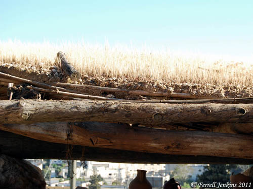 Typical of a roof from NT times with grass growing on it. Nazareth Village. Photo by Ferrell Jenkins.