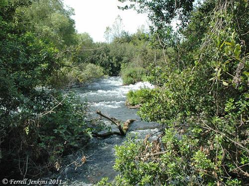 Nahal Dan in the Tel Dan Nature Reserve. Photo by Ferrell Jenkins.