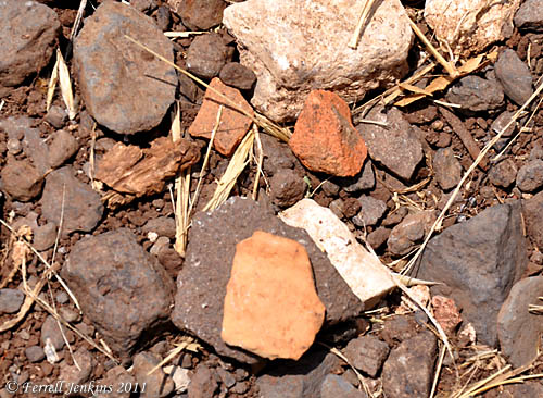 Pottery shards at En-Dor. Photo by Ferrell Jenkins.