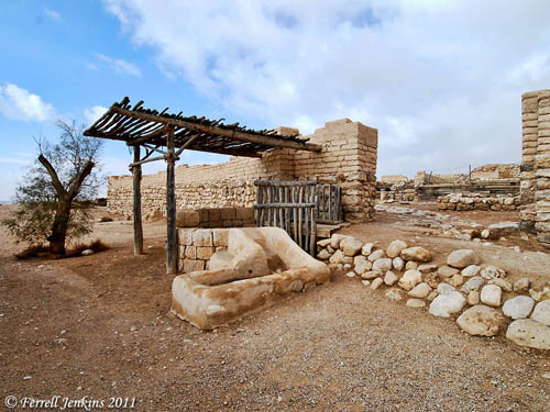 The outer gate, well, and tamarisk tree at Tel Beersheba. Photo by Ferrell Jenkins.
