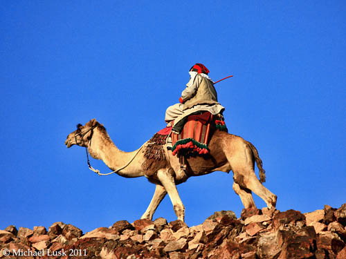 A camel waiting to take a tired walker back to the monastery. Photo by Michael Lusk.