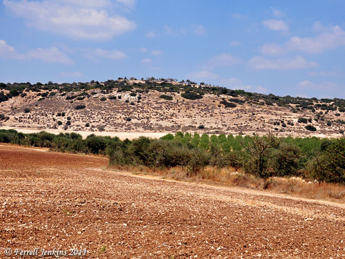 View of Khirbet Qeiyafa from across the Valley of Elah. Photo by Ferrell Jenkins.