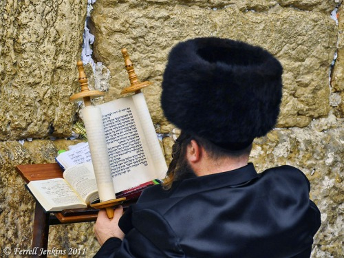Reading the Bible at the Western Wall. Photo by Ferrell Jenkins.