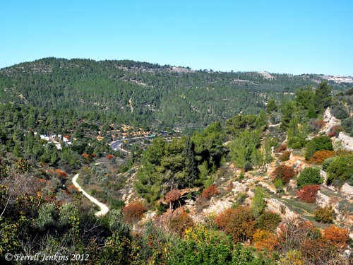 The vicinity of En Karem in the hill country of Judea. Photo by Ferrell Jenkins.
