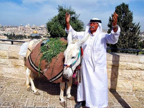 "An ""actor"" on the Mount of Olives. Photo by Ferrell Jenkins."
