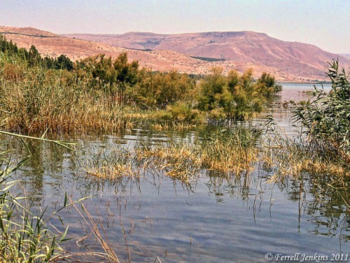 A secluded place on the NE corner of Sea of Galilee. Photo by Ferrell Jenkins.