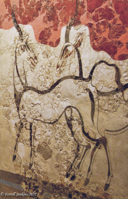 The Antelopes fresco from Akrotiri. Athens National Museum. Photo by Ferrell Jenkins.