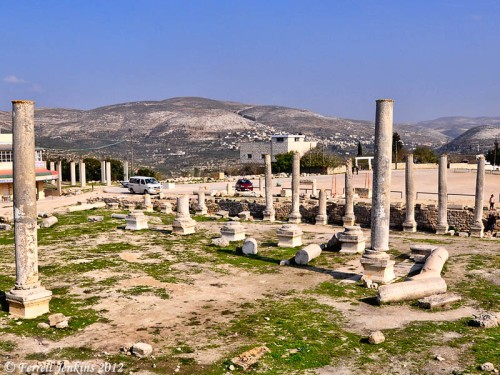 Samaria-Sebaste Forum ruins. Photo by Ferrell Jenkins.