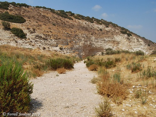 Brook of Elah below Azekah, August, 2008. Photo by Ferrell Jenkins.