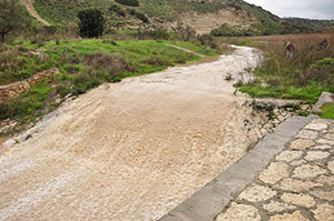 Brook of Elah after 3 days of rain. Photo: Carl Rasmussen.