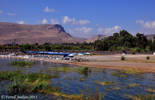 The Sea of Galilee at Nof Ginosar, September, 2012. Photo by Ferrell Jenkins.