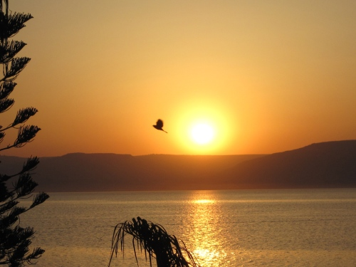 Sunrise on the Sea of Galilee. Photo by Ferrell Jenkins.