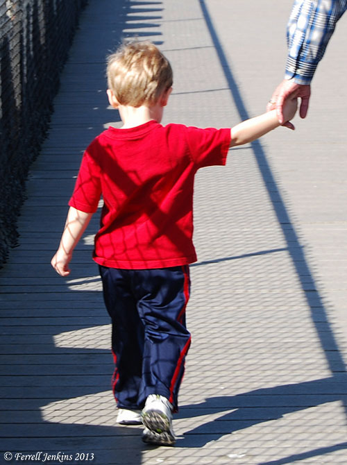 Child holding hand of adult.