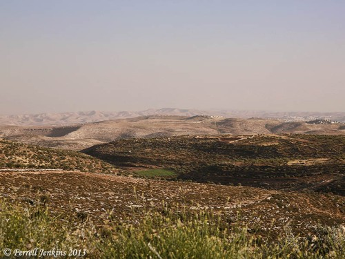 Wilderness to the east of Taybeh. Photo by Dan Kingsley.
