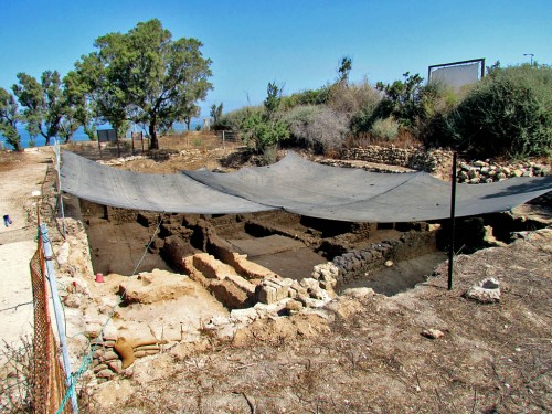 Grid 51 of the current Ashkelon excavation. Photo by Trent Dutton.