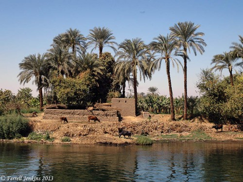 A scene on the Nile River in Upper Egypt. Photo by Ferrell Jenkins.