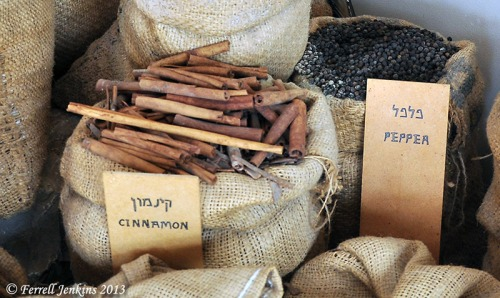 Cinnamon displayed on the Spice Route at Avedat. Photo by Ferrell Jenkins.