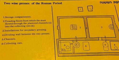 Explanation of Roman winepresses at Eretz Israel Museum, Tel Aviv. Photo by Ferrell Jenkins.