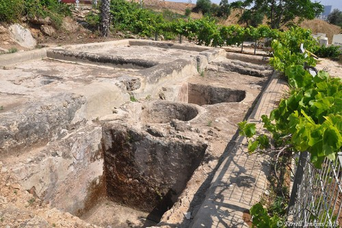 Roman winepresses at Eretz Israel Museum, Tel Aviv. Photo by Ferrell Jenkins.