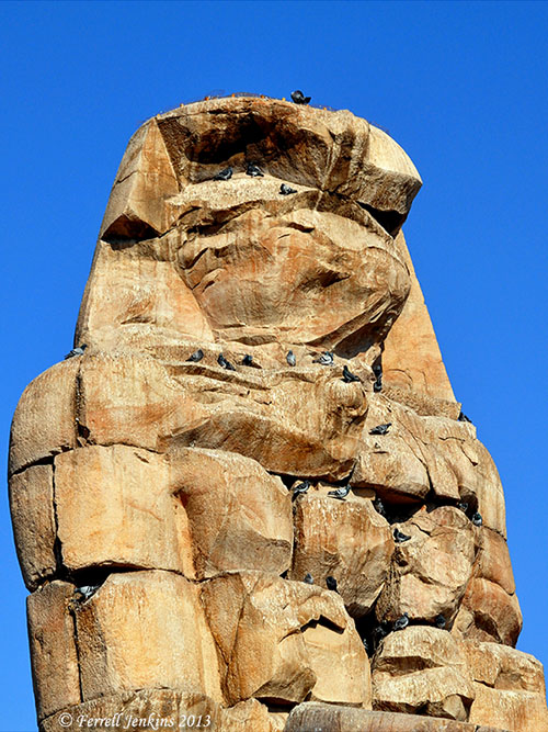 Statue of Amenhotet III (or Amenophis III) on West Bank of Nile at Thebes (Luxor). Photo by Ferrell Jenkins.