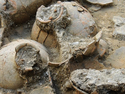Wine jars at Tel Kabri. Credit: Prof. Eric H. Cline & Tel Kabri Excavation.