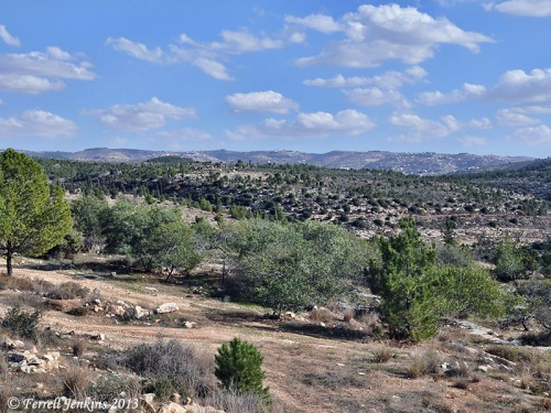 Judean Hills. View east to central mountain range from Hwy. 375. Photo by Ferrell Jenkins.