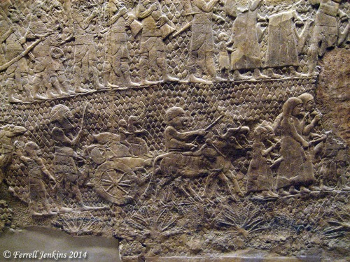 Sennacherib's Relief in British Museum. Photo by Ferrell Jenkins.