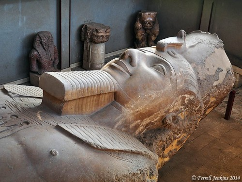 Fallen colossal statue of Ramses II at Memphis. Photo by Ferrell Jenkins.