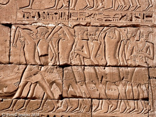 This is a portion of a wall at Medinet Habu showing the subjugation of the Sea People by Ramses III. Photo by Ferrell Jenkins.
