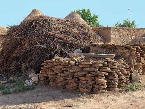 Dry boughs gathered for fire at Haran. Photo by Ferrell Jenkins.